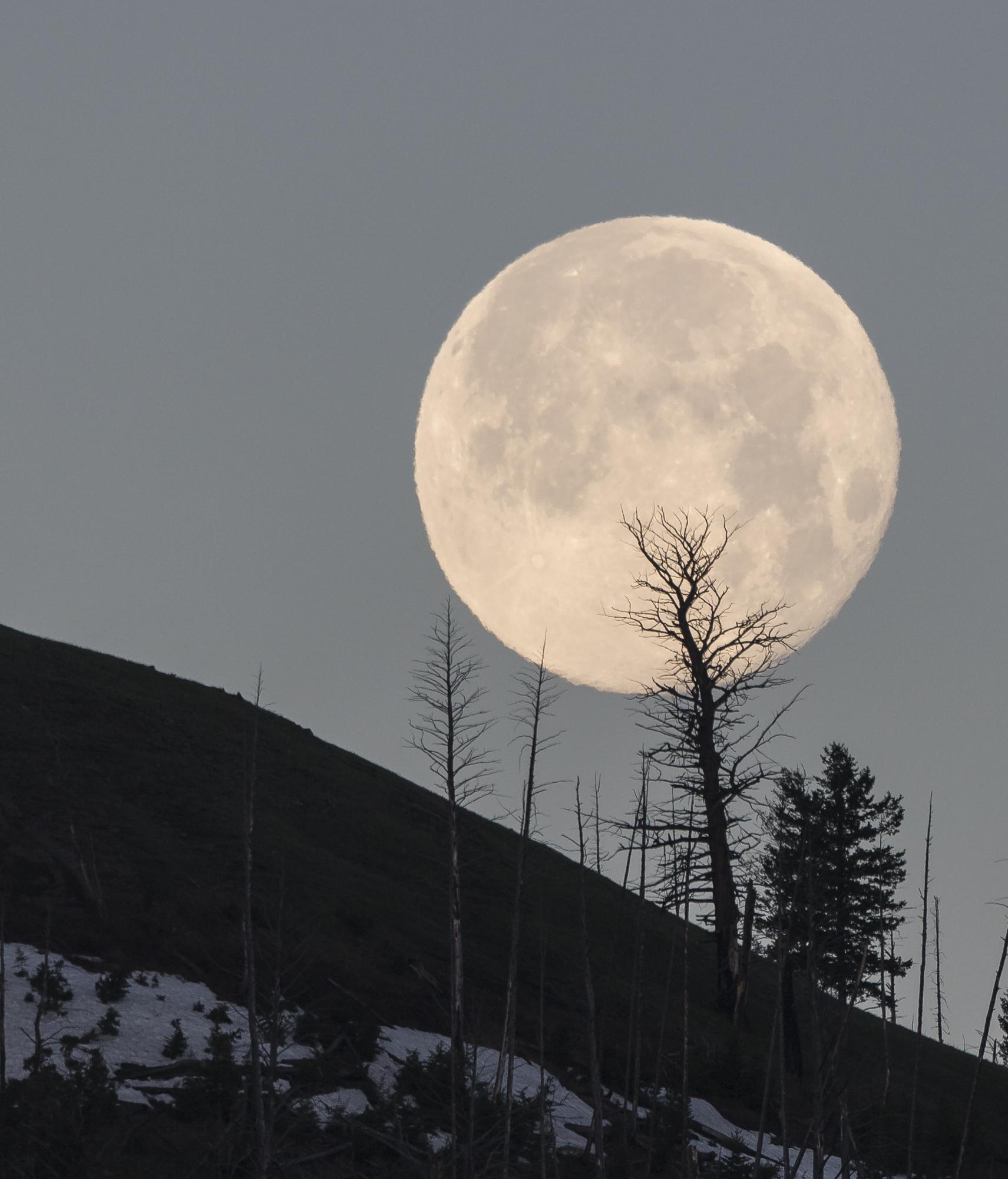 Full moon seting in Lamar Valleygg