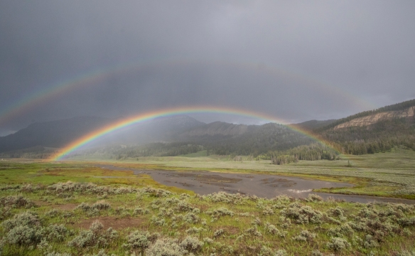 Rainbow at soda butte