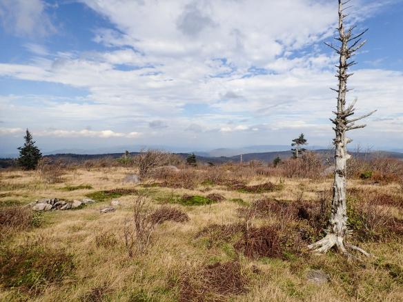 Wilburn Ridge