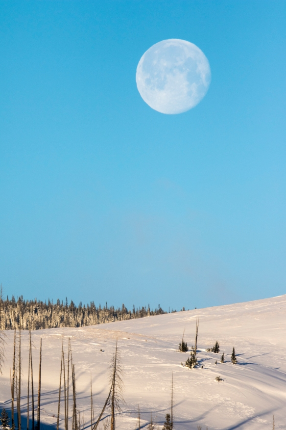 Moon setting at Swan Lake Flats