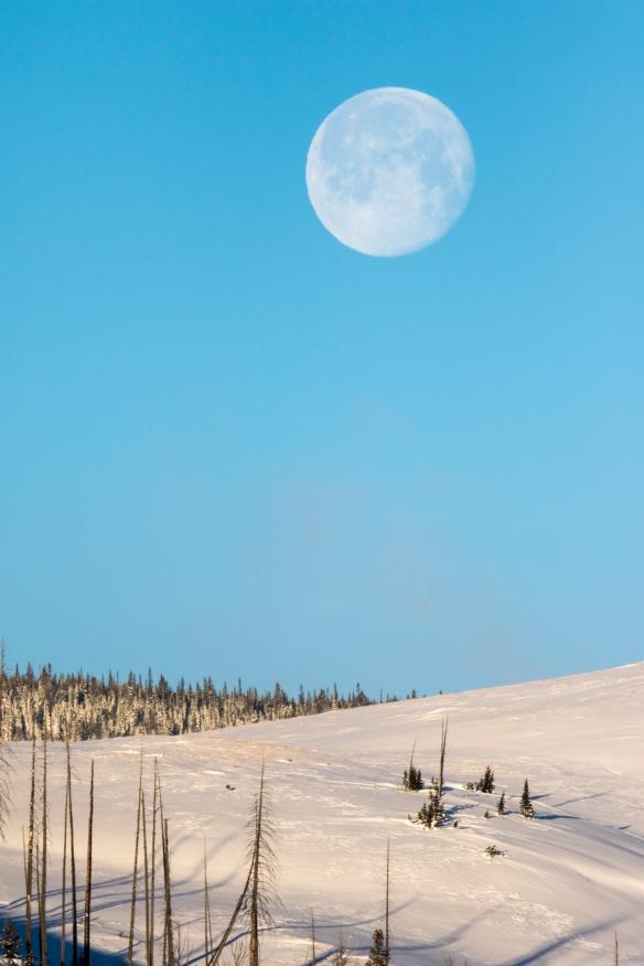 Moon setting at Swan Lake Flats
