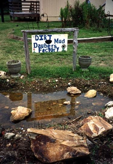 dirt dauber preserve