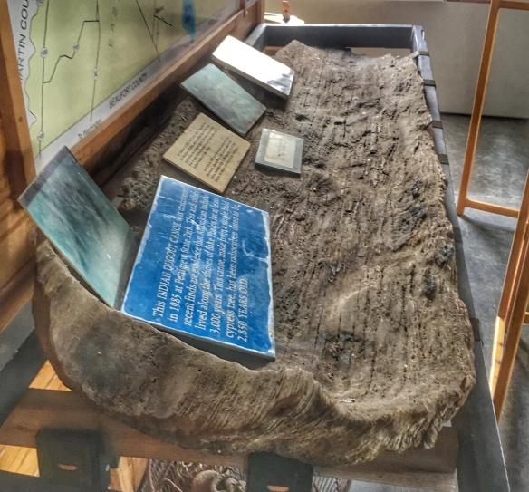 Dugoutr canoe in museum
