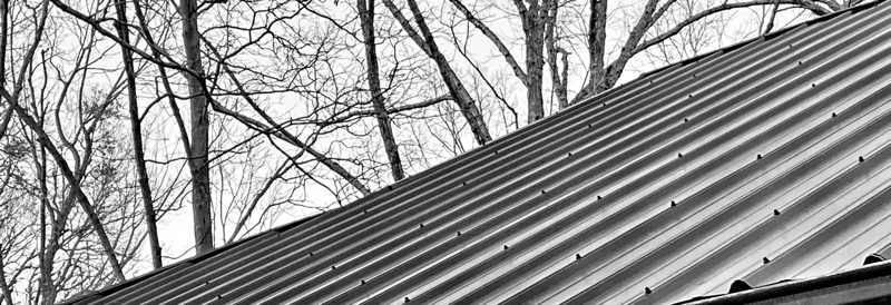roof lines and trees